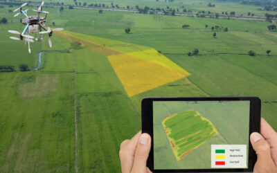 How Agri-tech Yields the Best Results